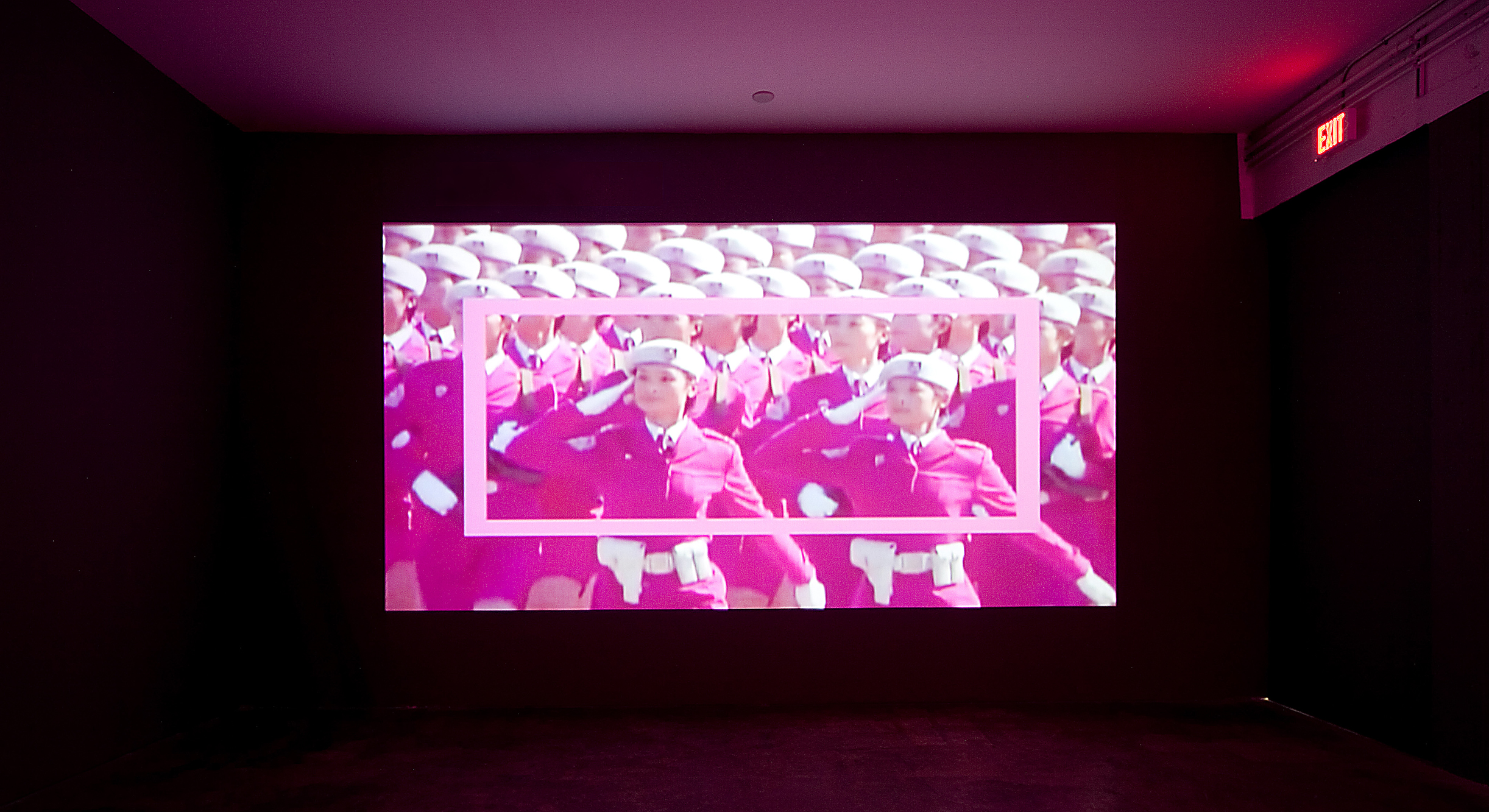 Felecia Chizuko Carlisle, PinkArmyPinkRectangle, 2011