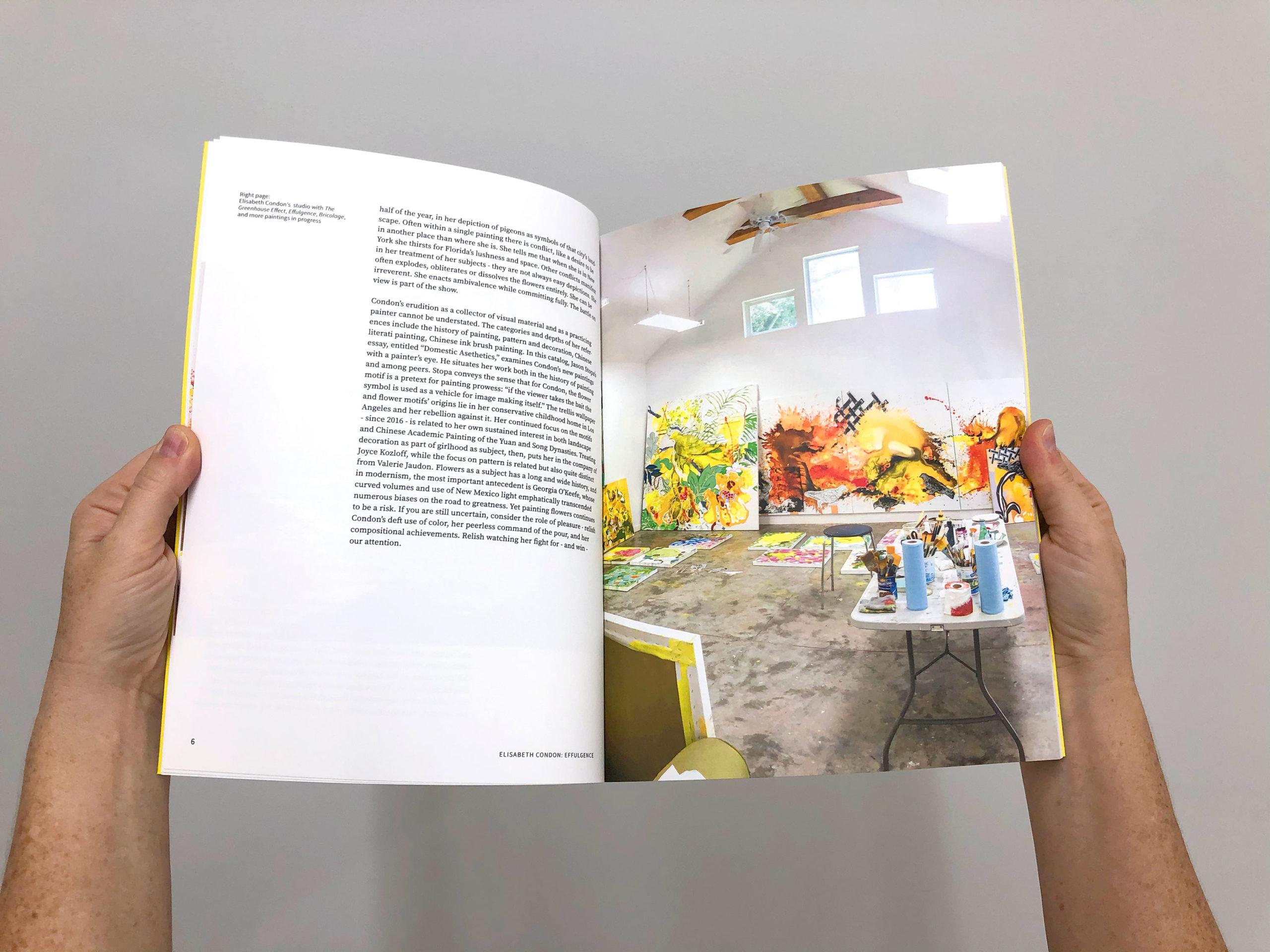Elisabeth Condon: Effulgence Book