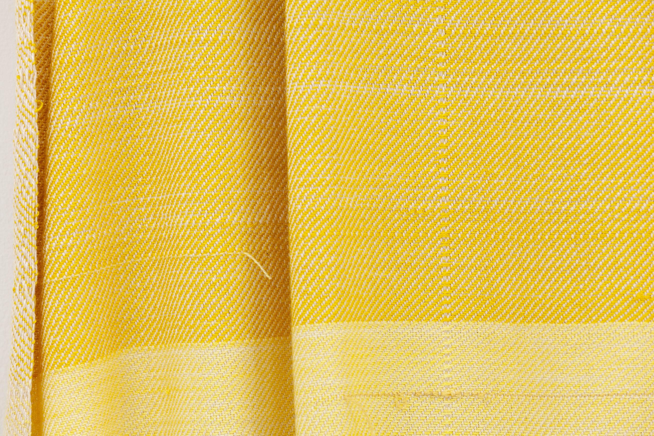 Frances Trombly, Weaving (Artemisia, Weld) (detail), 2020